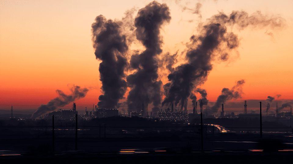 Can economic growth and environmental protection co-exist? | GP Model Essays - GP Tuition Online